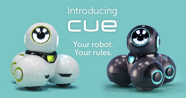 Image result for cue robot